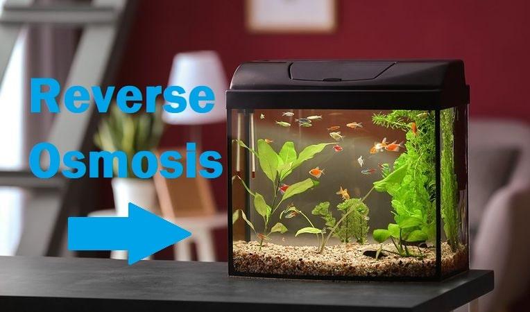 reverse osmosis for aquarium